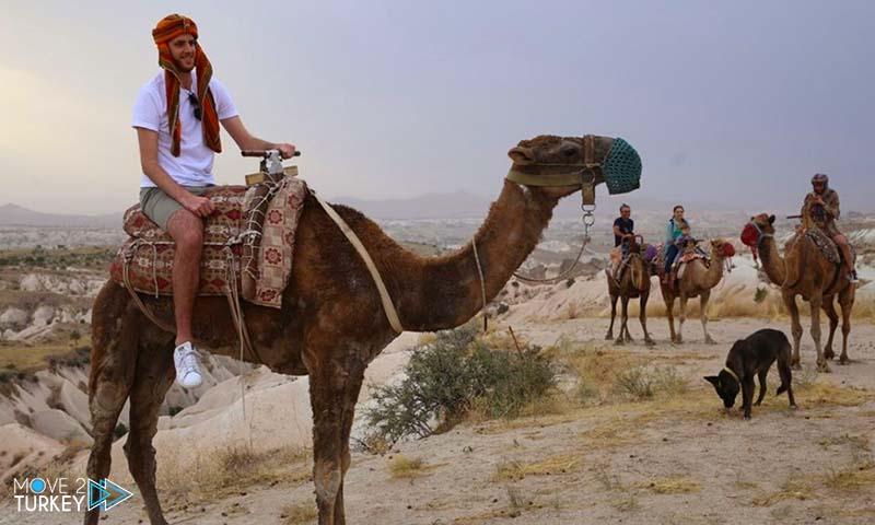 Camel tour in Cappadocia